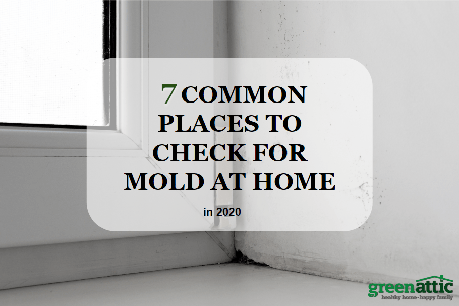 7 Common Places to Check for Mold at Home in 2020